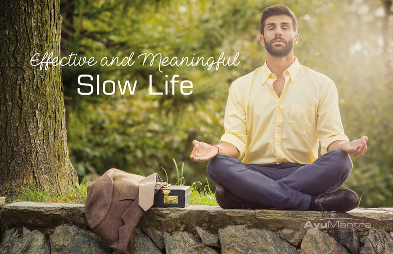 Effective and Meaningful Slow Life