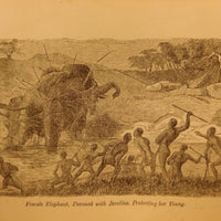 Livingstone's Africa. Perilous Adventures and Extensive Discoveries in the Interior of Africa - Books Above the Bend