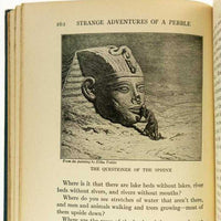 The Strange Adventures of a Pebble - Books Above the Bend