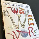 The Way We Work: Getting to Know the Amazing Human Body - Books Above the Bend