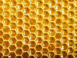 Why Do Bees Make Beeswax?