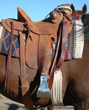 Rough-Out Saddles and Horse Tack What is It?