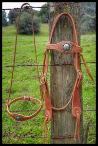 Old West Style Headstall with Caveson