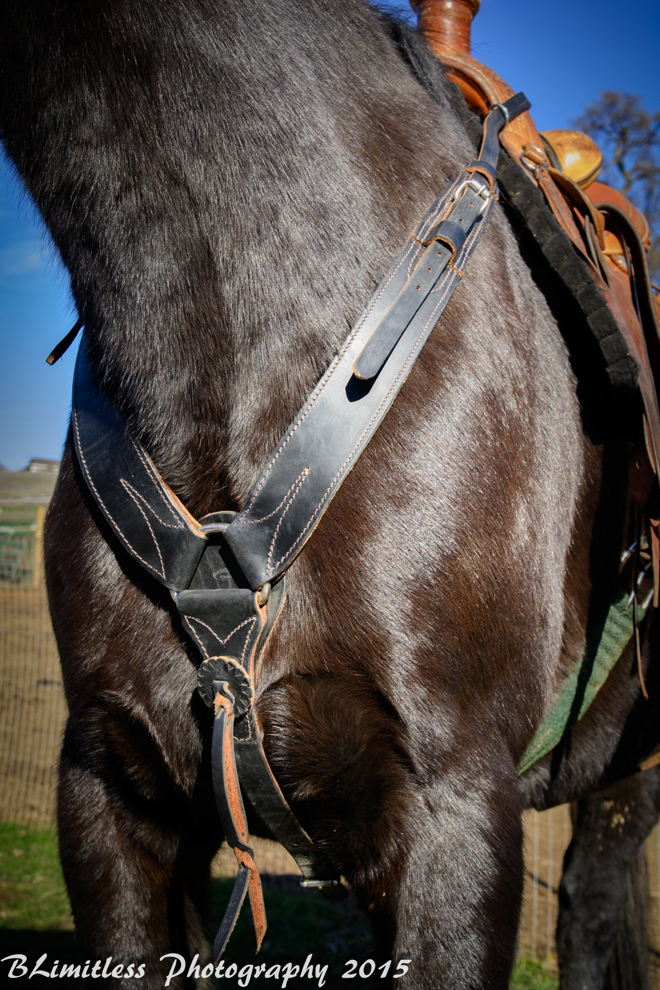 NEW HORSE TACK! American Made Western Harness Leather Pulling Collar