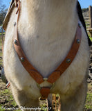 Nevada Style Breast Collar