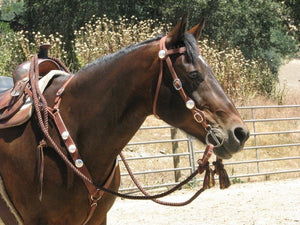 "Bridle Rein Set 3/4"" Signature"
