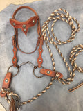 Tooled Leather Headstall with Reins