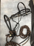 Black Beauty Concha Hackamore Set