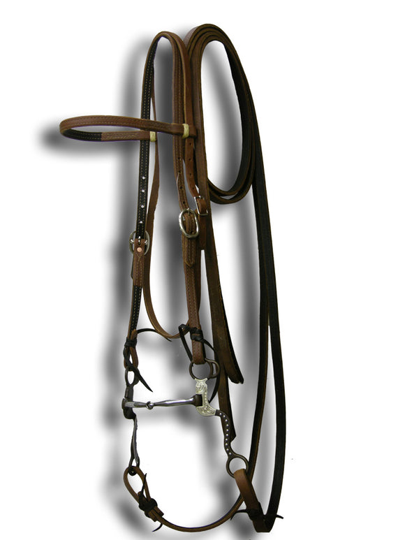 Lined Headstall, Reins & Bit Set