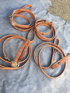 Dog collars with leash