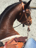 Ultimate Sidepull Headstall Leather Nose