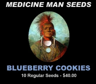 Blue Cookies strain seeds