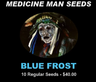 Blue Frost strain seeds
