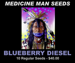 Blueberry Diesel strain seeds