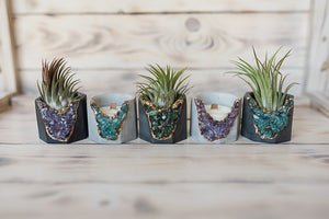5 mini concrete geode vessels holding air plants or candles