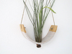 A speckled white air plant hanger holds a green air plant.