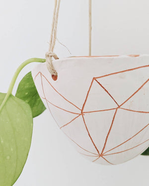 Geotriangle Hanging Planter