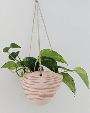 Horizon Line Hanging Planter