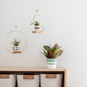 Brass Ring Plant Hanger
