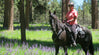 Ochoco National Forest on Horseback