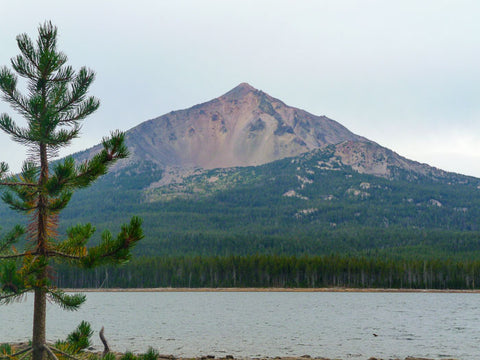 Badger Lake Trail, Fourmile Lake Campground