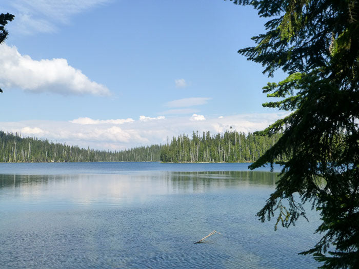 Charlton Lake Loop