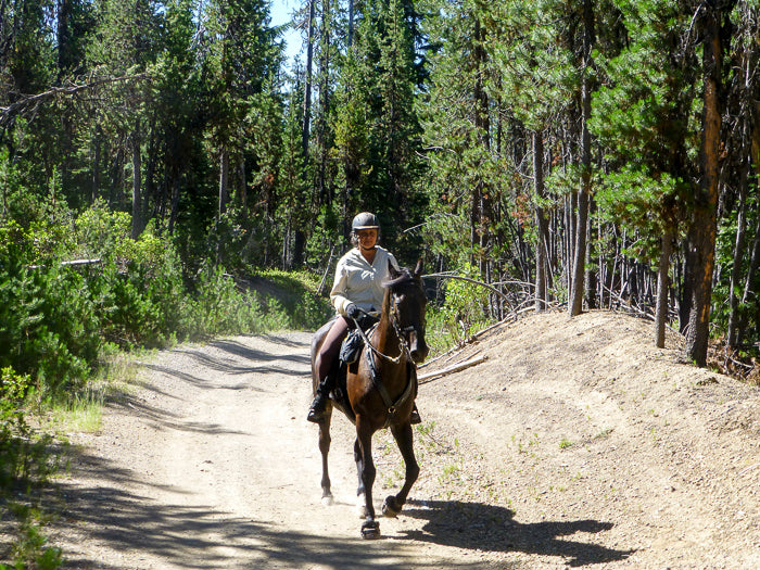 Diamond Lake Horse Trails