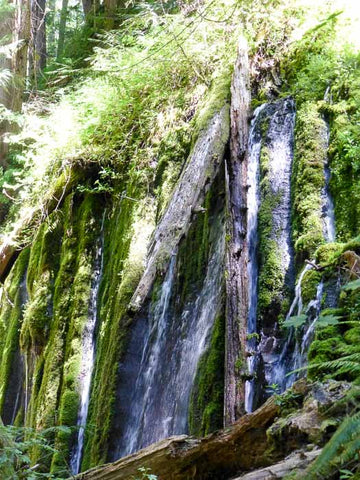 Hot Springs Segment, North Umpqua Trail