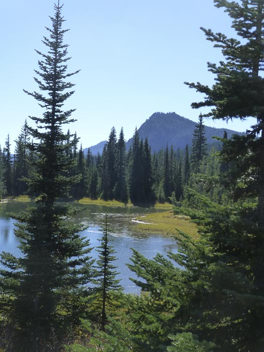 Indian Heaven Wilderness from Placid Lake