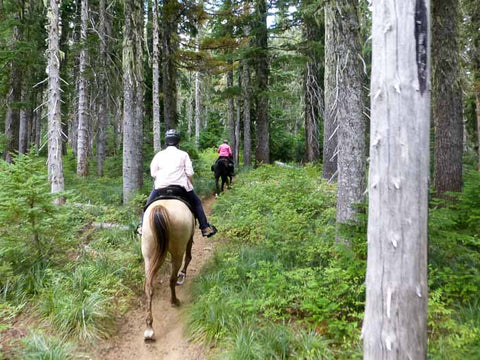Indian Race Track Trail, Falls Creek Horse Camp