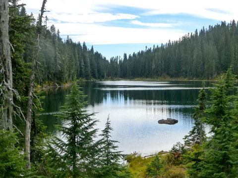 Clear Lake, Indian Heaven Wilderness
