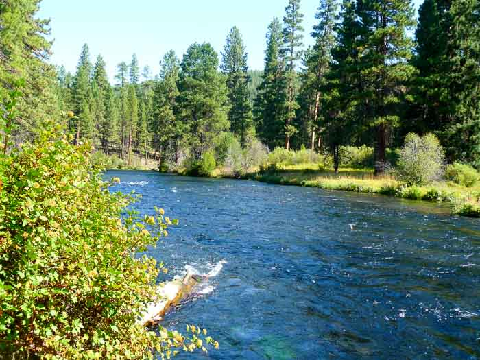 Metolius River Trail, Sheep Springs Horse Camp