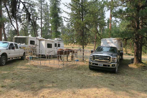 Corral Flat, Ochoco National Forest