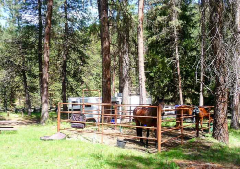 Dry Creek Horse Camp, Ochoco National Forest