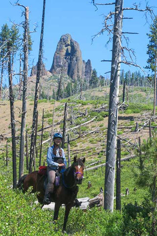 Twin Pillars Trail, Ochoco National Forest