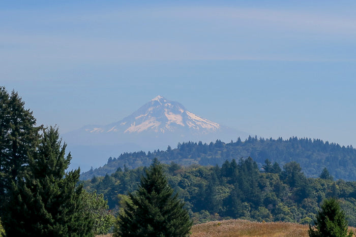 Powell Butte Nature Park