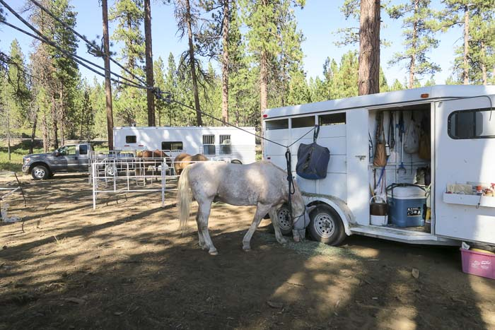 Trailer Trekking the Metolius-Windigo Trail