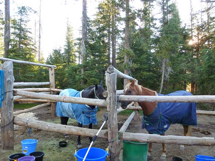 Quinn Meadow Horse Camp