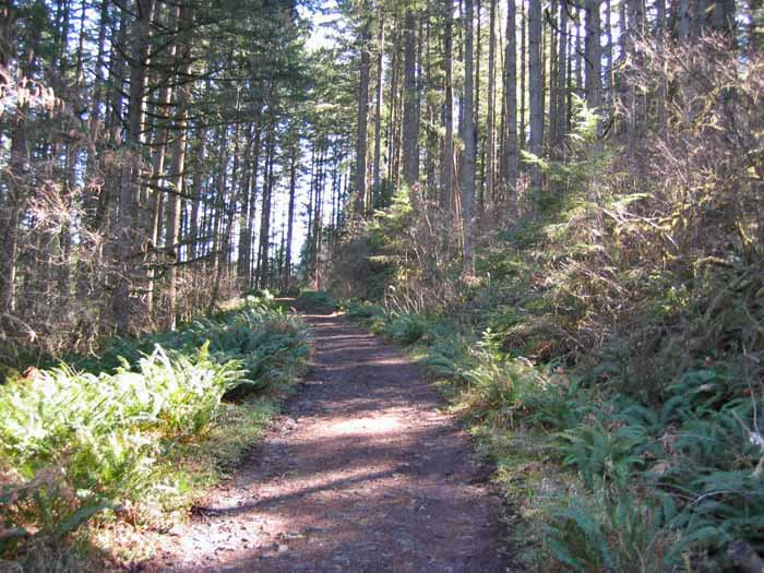 Huckleberry Trail, Molalla River Corridor