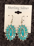 Photo F Turquoise Earrings
