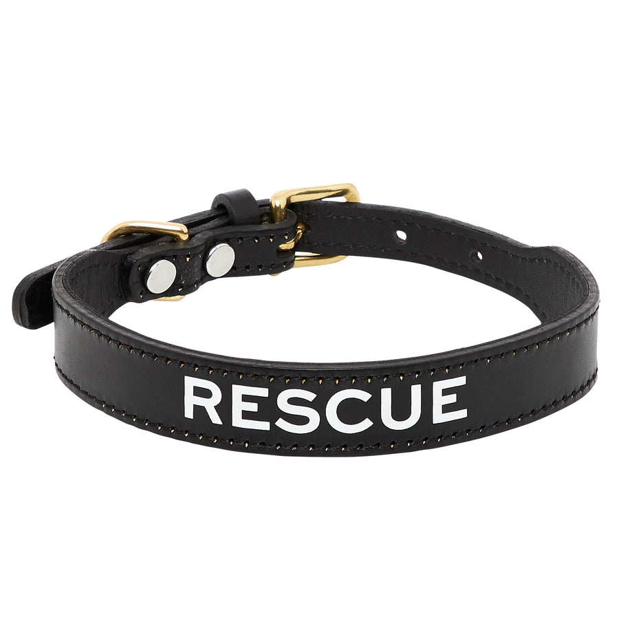 Leather Dog Collar - RESCUE