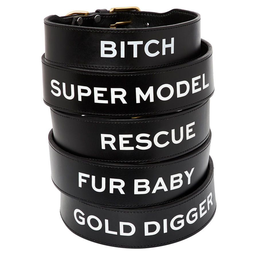 Leather Dog Collar - BITCH