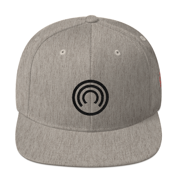CLOAK B Snapback Wool Blend Hat-Heather Grey- Crypto & Proud