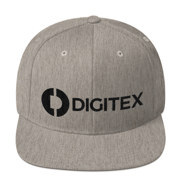 Digitex / DGTX BLH Snapback Hat-Heather Grey- Crypto & Proud