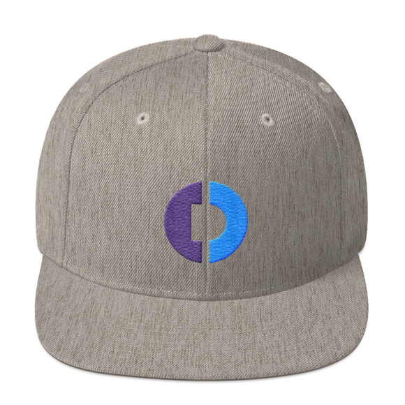 Digitex / DGTX C LB Snapback Hat-Heather Grey- Crypto & Proud