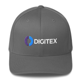 Digitex / DGTX CWLH Fit Cap-Grey- Crypto & Proud