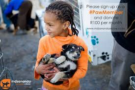 child holding africanis puppy at mdzananda animal clinic cape town south africa
