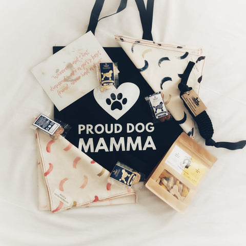 dog mom monthly gift box for dog and dog owners