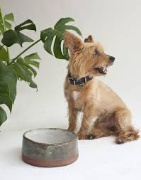 ceramic dog bowls handmade by Soenchie for the fur kids