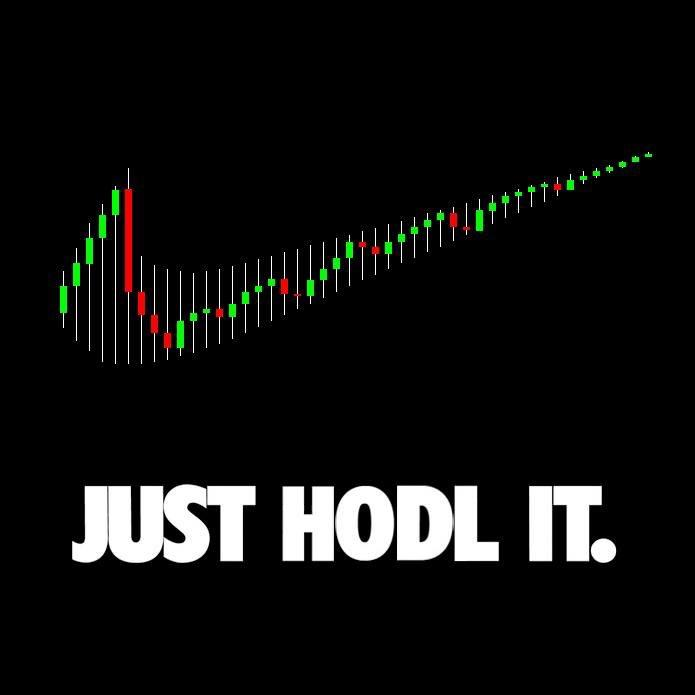 Just HODL it !